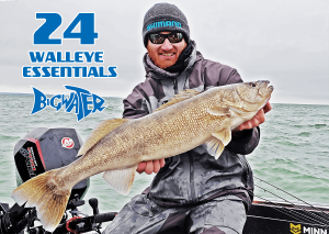 Walleye Essentials
